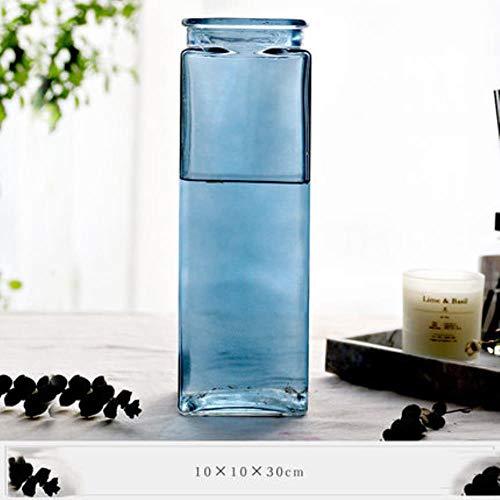 FICI Eenvoudige vierkante gedroogde bloem glazen vaas Nordic hydrocultuur fles bloemstuk woonkamer decoratie, blauw L
