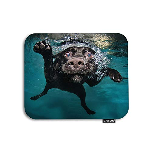 Moslion Dog Mouse Pad Cute Animal Pet Black Dog Underwater in Swimming Pool Ocean Sea Gaming Mouse Pad Rubber Large Mousepad for Computer Desk Laptop Office Work 7.9x9.5 Inch Green
