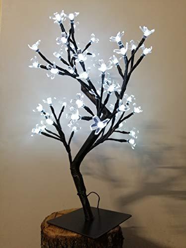 Con diseño de flores de cerezo LED para el árbol de 48 LED y 24-volt-transformador de luz fría para uso en interiores