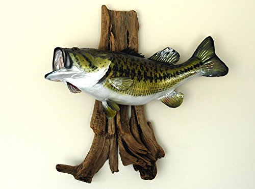Wallmonkeys Large Mouth Bass Mounted Wall Decal Peel and Stick Graphic WM255711 (18 in W x 13 in H)