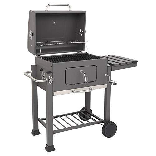 BBQ Propane Gas Grill, Stainless Steel Patio Garden Barbecue Grill with Foldable Side Shelf Grills Propane