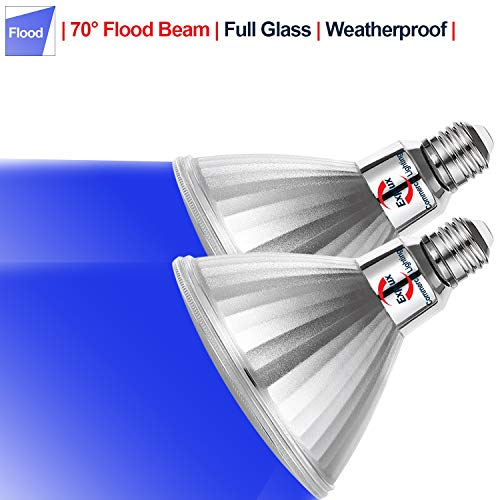 See the TOP 10 Best<br>Blue Outdoor Flood Light Bulbs