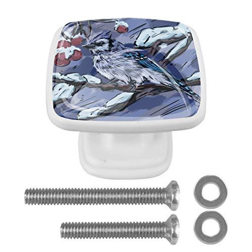 Paquete de 4 pomos con tornillos para gabinetes de cocina, tiradores de cajones y pomos de cristal de cristal, asas para aparadores, armarios, mesita de noche, estantería, pájaro de invierno