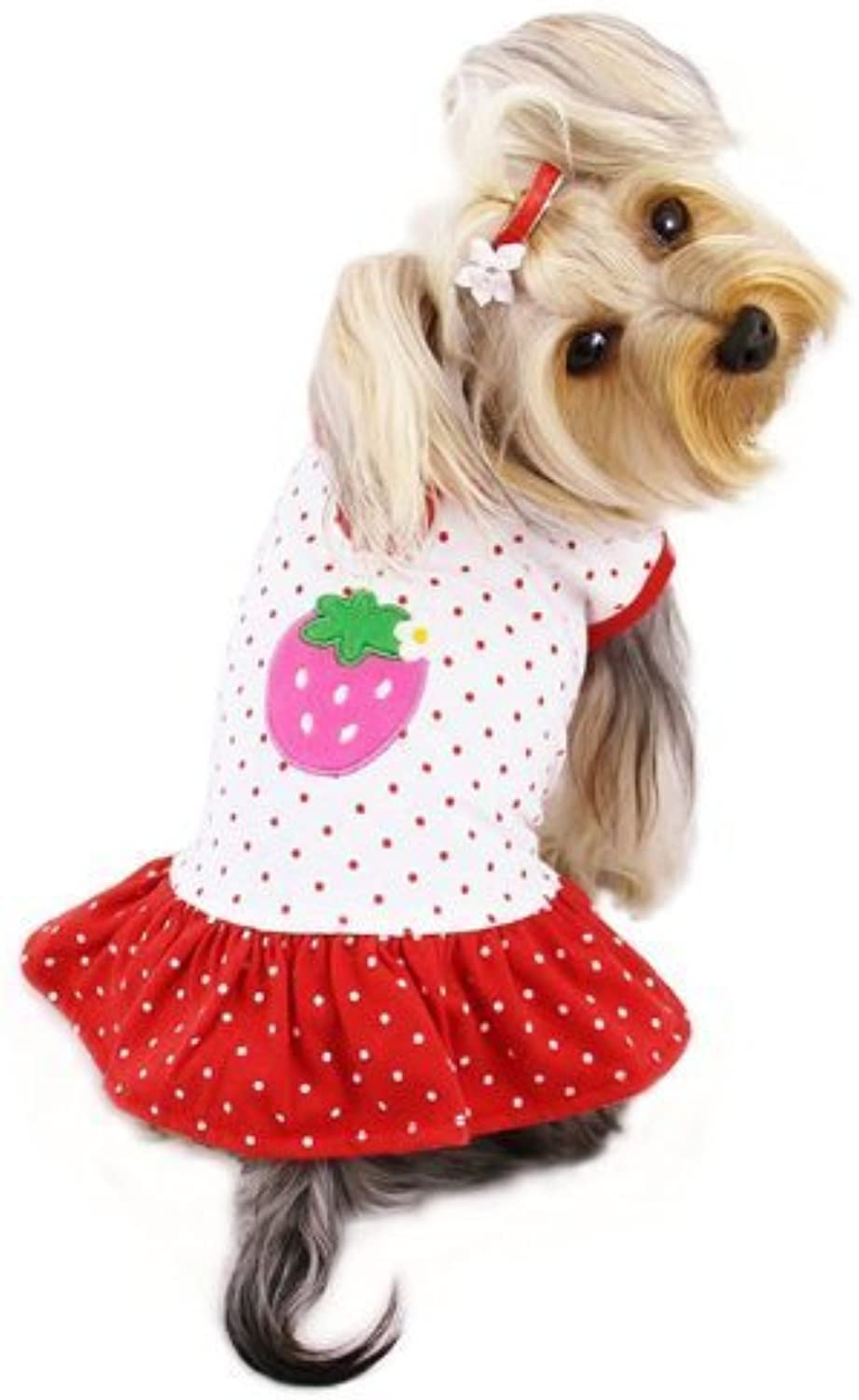 Adorable and Lightweight Dog Dress with Polka Dots and a Strawberry Patch Sizes  Medium by Klippo Pet