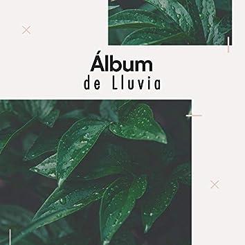 Álbum Tranquilo de la Naturaleza y Lluvia
