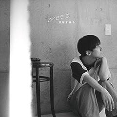 渋谷すばる「風のうた」の歌詞を収録したCDジャケット画像