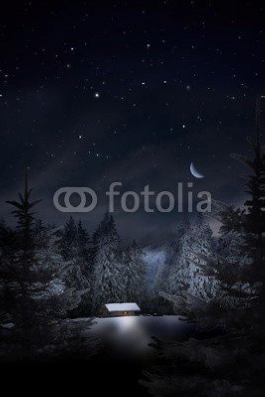 distribución global Árbol de Navidad Navidad Navidad con Diseño de bosque (36047387), lona, 40 x 60 cm  servicio considerado