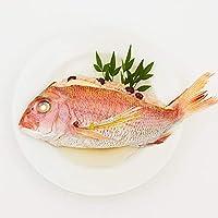 日本料理神谷監修お食い初め膳 祝いづくし鯛赤飯コース~葵(2段重) (鯛赤飯単品(400g))