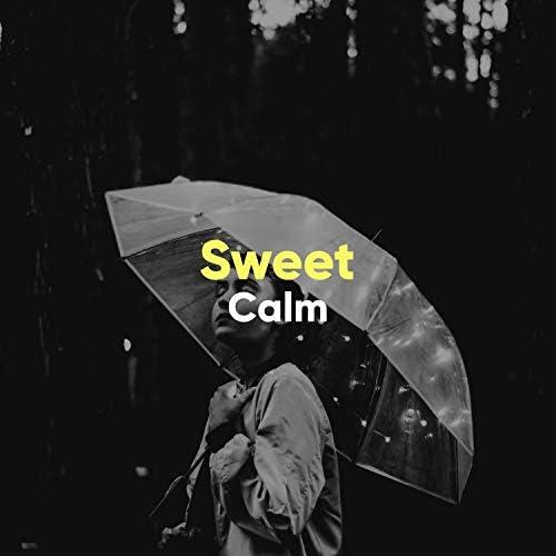 Rainforest Ambience & Gentle Rain Makers