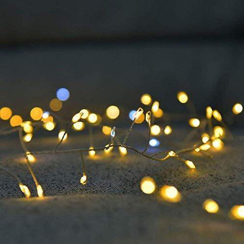 2M 5M Alambre de Cobre LED Cadena de Luces Petardo Guirnalda de Hadas Luz para Ventana de Navidad Fiesta de Bodas Funciona con Pilas - Blanco cálido, 2m 100leds