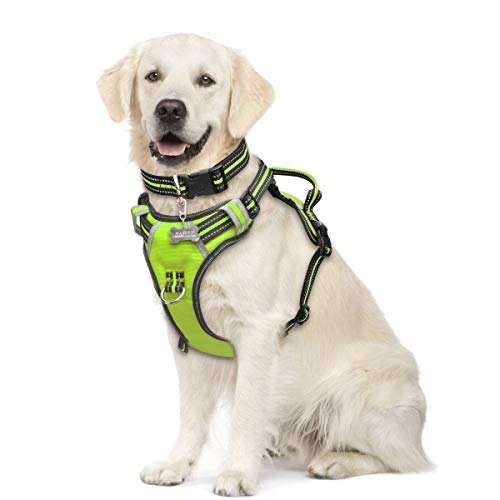 Discount Dog Harness