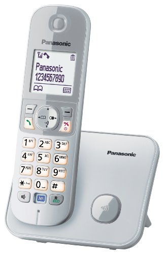 Panasonic KX-TG6811JTS Telefono Cordless DECT, Schermo LCD da 1,8  , Base Design Sottile e Compatto, Argento  Bianco
