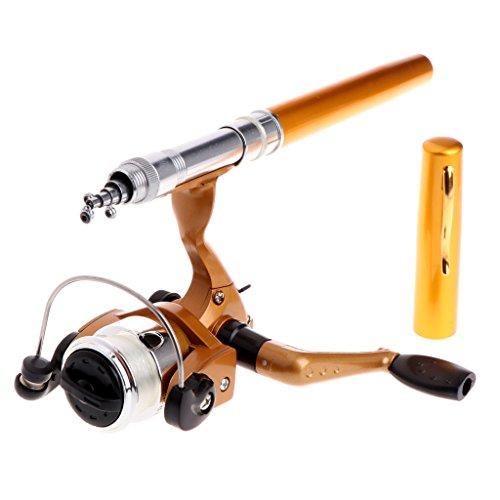 Yanhonin Mini Kit de caña de Pescar, caña de Pescar telescópica en Forma de bolígrafo portátil de 1 m con Carrete de Hilo Lanzador, Y2SS101344-BK, GDY#, 21cm-100cm