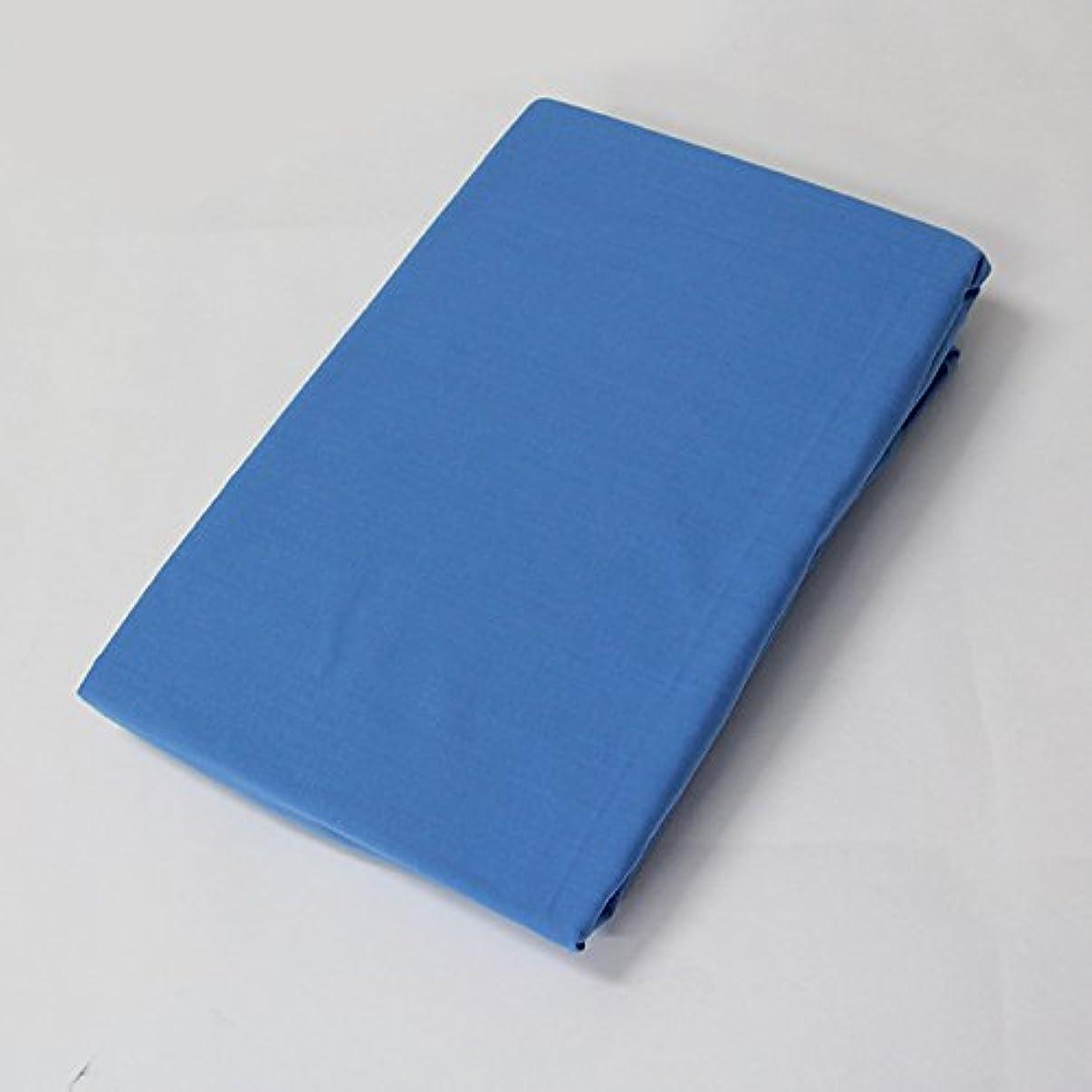 うぬぼれ刑務所包括的【オリジナル無地カラー】枕カバー(43×63cm) ブルー 新生活寝具
