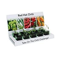 Chilli Recyclable Varieties Gardeners Materials