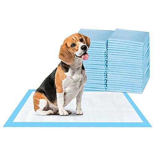 ScratchMe Hunde- und Welpenunterlage, super saugfähig, wasserdicht, 40 Stück, Größe M, 59,9 x 69,6 cm