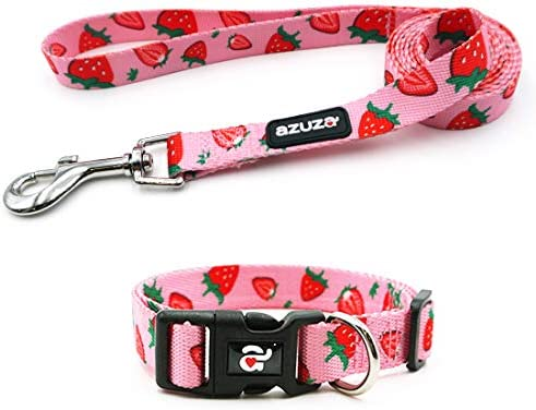 azuza Dog Collar and Leash Set Cute Strawberry Patterns on Pink Nylon Collar and Matching Leash product image