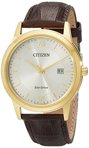 Citizen Men's Eco-Drive Stainless Steel Watch with Date, AW1232-04A