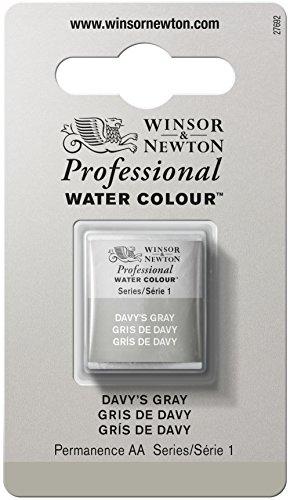 Winsor & Newton 0101217 Professional Watercolours (feinste Künstler Aquarellfarbe - 1/2 Näpfchen höchstmöglicher Pigmentierung, ausgezeichneter Lichtechtheit) davy's grau