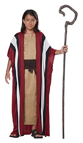 California Costumes Shepherd/Moses Boy Costume, One Color, Large/X-Large