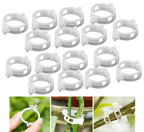 ericotry 100 Pcs Plant Support Clips Tomato Vine Clips Tomato Trellis Clips for Garden Vine Vegetables to Grow Upright and Makes Plants Healthier (Diameter 25MM)