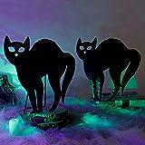 Cllayees Halloween Decorations 3D Black Cat 2...