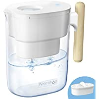 Waterdrop Chubby 10-Cup Water Filter Pitcher with 1 Filter