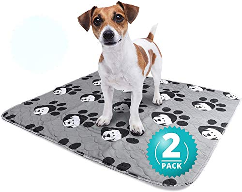 Zpane Washable Pee Pads for Dogs, 2-Pack Large (30x32), Leak-Proof, Reusable Puppy Training Pads, Absorbent and Odor-Free, Non-Slip, Whelping, Incontinence, Travel, Mattress Protector, Pet Pen