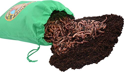 Uncle Jim's Worm Farm European Nightcrawlers Composting and Fishing Worms 1 Lb Pack