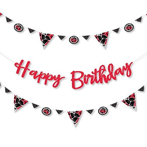 Big Dot of Happiness Happy Little Ladybug - Birthday Party Letter Banner Decoration - 36 Banner Cutouts and Happy Birthday Banner Letters