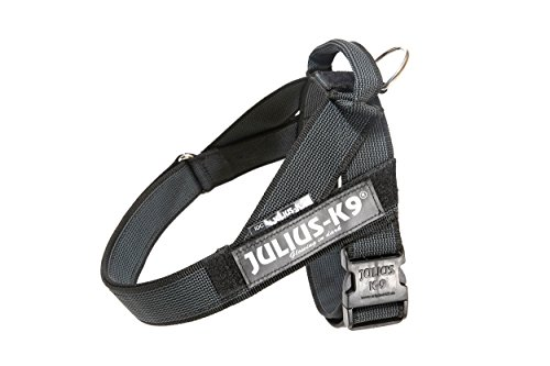 Julius-K9 IDC Color & Gray Belt Harness for Dogs, Size 3, Black-Gray