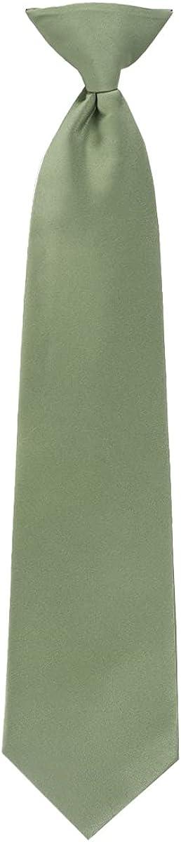 Boy's Solid Clip on Tie (14 inch