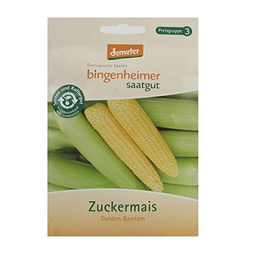 Bingenheimer Saatgut - Zuckermais Golden Bantam - Gemüse Saatgut / Samen