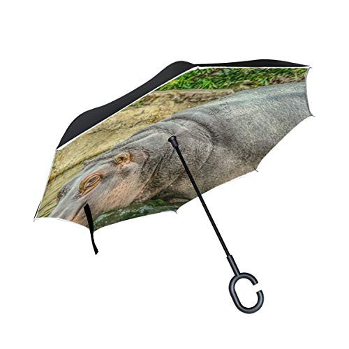 PINLLG Nilpferd-Regenschirm, doppelschichtig, faltbar, mit C-förmigem Griff, UV-Schutz, winddicht, für Auto, Outdoor