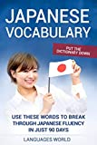 Put the dictionary down: Use These Words to Break Through Japanese Fluency in just 90 days (Japanese Vocabulary)