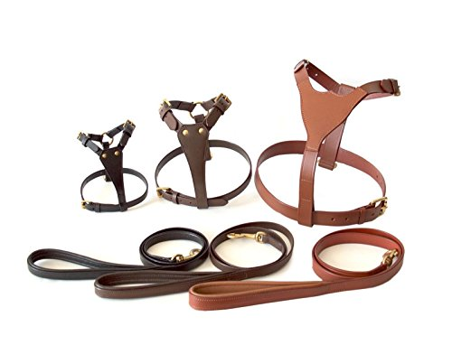 TUGBY XS/S/Extra Small/Small Genuine Leather Dog Harness Set with Leash/Lead (S, Brown)