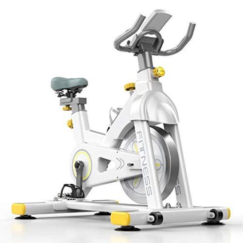Bicicleta Ejercicio Resistencia Magnética Silenciosa,Transmisión por Correa,Asiento y Manija Bicicleta Estacionarios Ajustables en Altura,para Equipos Entrenamiento Casa