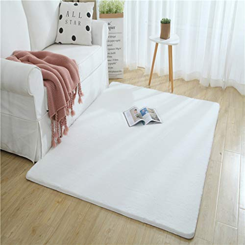 W&HH SHOP - Alfombra de pelo de conejo nórdico, moderna, para dormitorio o cama, para el salón, 120 x 160 cm