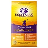 Wellness Natural Pet Food Complete Health Natural Grain Free Dry Puppy Food, Chicken & Salmon, 4-Pound Bag