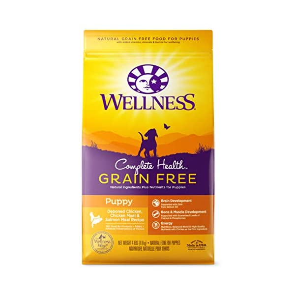 Wellness Complete Health Natural Grain Free Dry Dog Food Puppy Chicken & Salmon