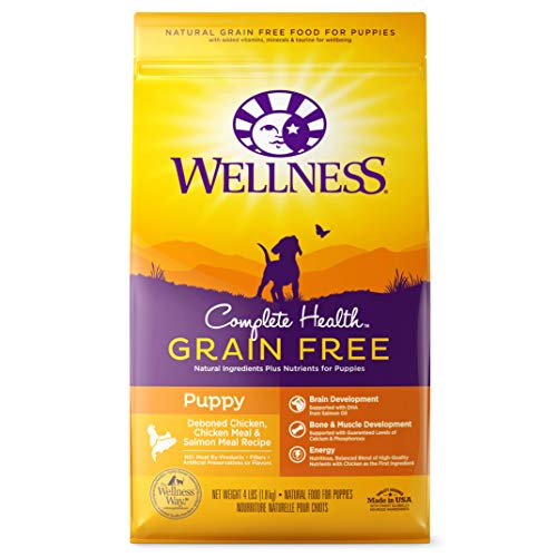 Wellness Natural Pet Food natural Grain-Free Dry Dog Food