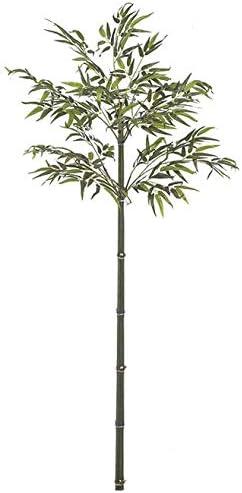 6 Great interest Foot OFFer Custom Bamboo Palm