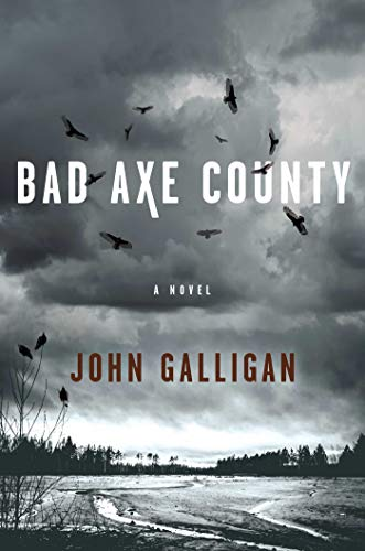 Image of Bad Axe County: A Novel (1) (A Bad Axe County Novel)