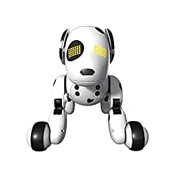 Top 10 Best Robot Dogs For Kids and Adults - RobotAge