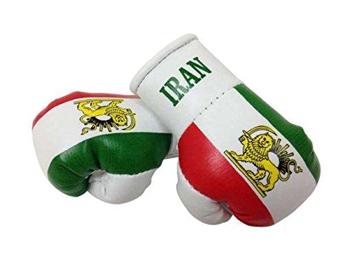 Mini Boxhandschuhe Iran (1 Paar)