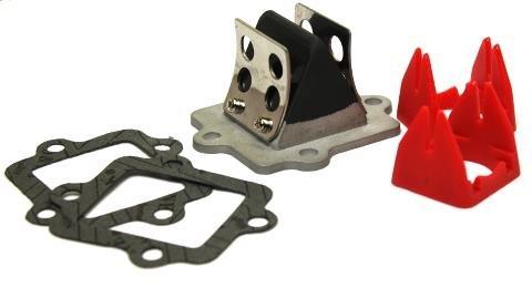 Racing Membranblock Carbon Aprilia SR50, CPI Generic Explorer, Italjet, Yamaha Aerox Jog Neos