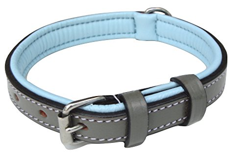 Soft Touch Collars Padded Small Leather Dog Collar, Gray and Blue, 16' Long by 5/8' Wide, Fits Neck Size 11' to 13.5' Inches