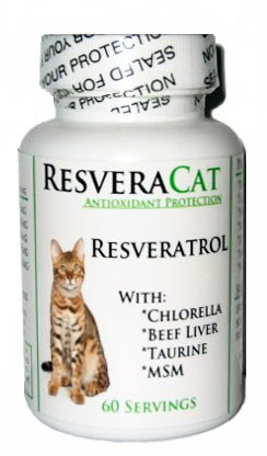 Top 10 best selling list for beef taurine supplement for cat