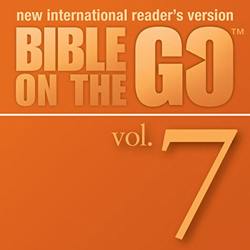 Bible on the Go Vol. 07: The Ten Plagues on Egypt; the First Passover; and the Exodus (Exodus 7-12) audiobook cover art