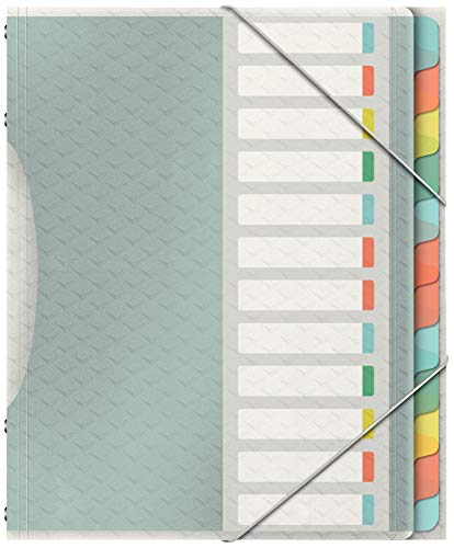 Esselte Colour'Ice Ordnungsmappe, A4, 12 Fächer, PP, Mehrfarbig, 626256
